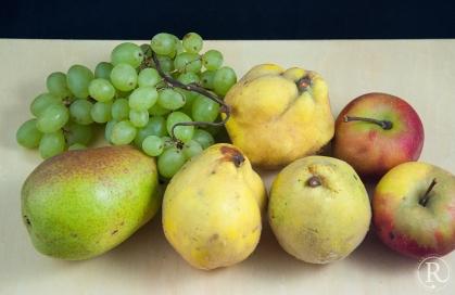 Vier Herbstfrüchte - Überbleibsel