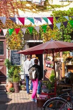 Dresden Neustadt Hinterhofladen Cottage