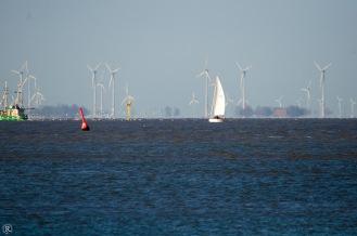 Der Windpark im Watt
